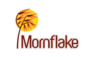 New promo- Voice of Mornflake TV bumpers