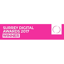 Surrey Digital Awards voice over winner 2017 logo